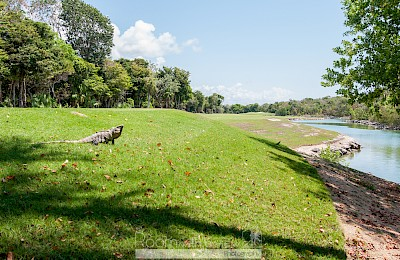 Akumal Real Estate Listing | 3 Lots for Sale
