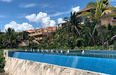 Puerto Aventuras Real Estate Listing | Pueblo Escondido