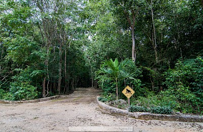 Tulum Real Estate Listing | Lote F2
