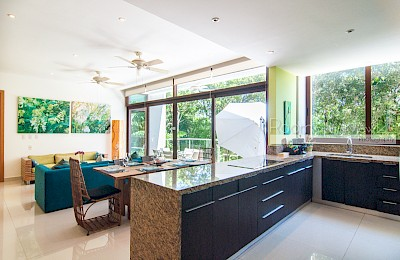 Akumal Real Estate Listing | TAO Xiao M4