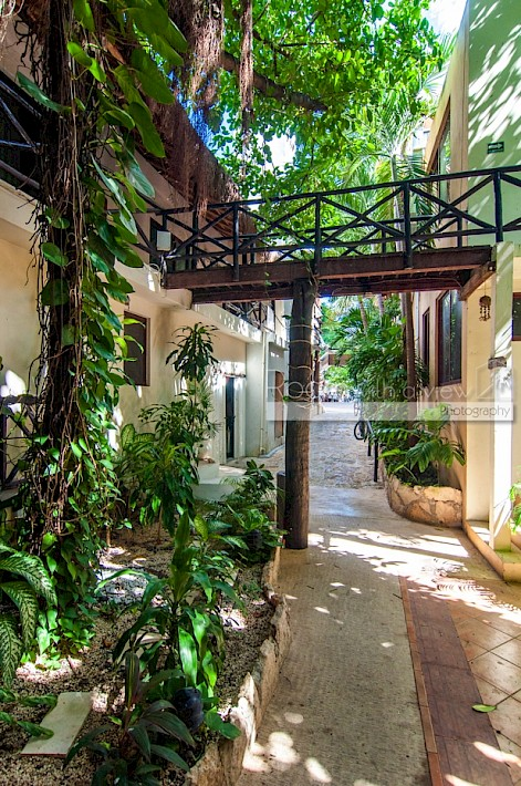 Playa Del Carmen Real Estate Listing | Boutique Hotel